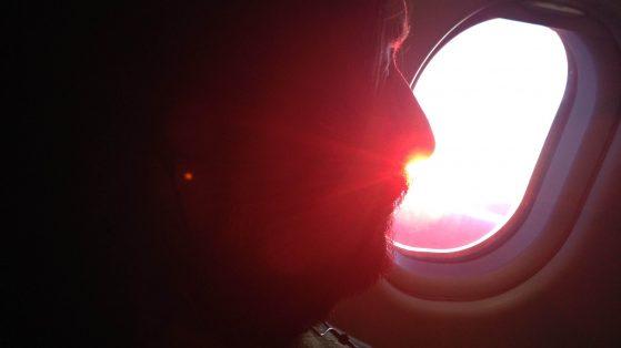 Lavernier in volo